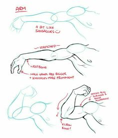 Arm, muscles, text; How to Draw Manga/Anime