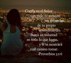 Confía en él Señor
