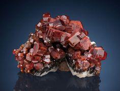 Minerals:Small Cabinet, Vanadinite on Baryte. Mibladen Mining District, Midelt, KhénifraProvince, Meknès-Tafilalet Region,, Morocco. ...
