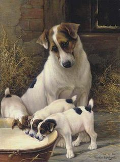 Pretty mommy doggy watching over her little ones!.