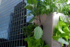 KUBI von Maag Design. Ein Hochbeet mit integriertem Kompost und Wasserspeicher - Urban gardening auf dem Balkon. #ideas #Pflanzturm #KUBI #Verticalgardening