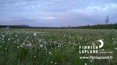 Weather & Climate - Film Lapland