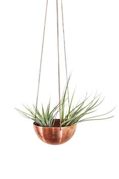 Copper hanging planter, $125.45* (US$118), Insekdesign on Etsy