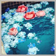 Floating florals. #LCLaurenConrad #Instagram #Kohls
