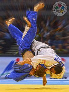 Ilias Judo Karate, Taekwondo, Brazilian Jiu Jitsu Belts, Martial Arts Belt Display, Judo Throws, Thai Boxe, Sports Painting, Fighting Poses, Hapkido