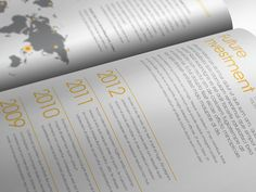 Avant Garde Annual Report 2012