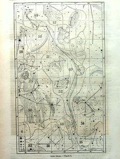 Gorgeous antique constellations chart print by LyraNebulaPrints