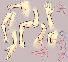 Arm elbow study by =moni158