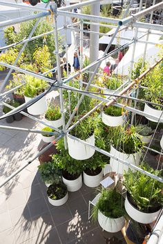 MELBOURNE-FOOD-AND-WINE-FESTIVAL-HUB-by-HASSELL-Landscape-architecture-14 « Landscape Architecture Works | Landezine Landscape Architecture ...