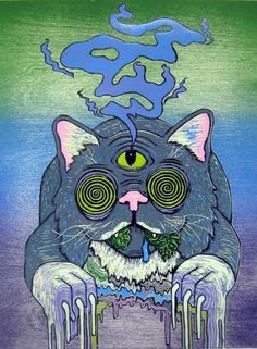 cat, drugs, and acid image