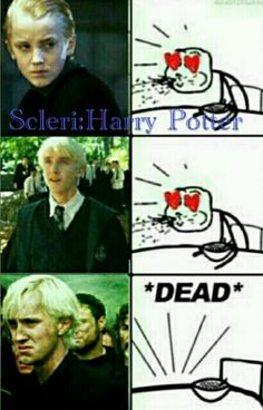 Draco Malfoy is my love Harry Potter Puns, Harry Potter Draco Malfoy, Harry Potter Tumblr, Harry Potter Universal, Harry Potter World, Draco Malfoy Memes, Severus Snape, Hermione Granger, Dramione