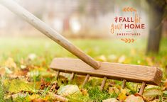 Fall Lawn Prep with Outdoor Pro Carson Arthur - Better Homes and Gardens Real Estate Life