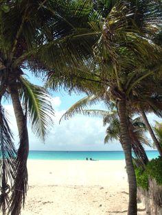 Piece of paradise - Playacar