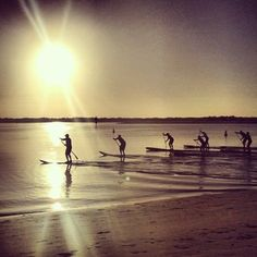 Currumbin Creek - Stand Up Paddleboarding