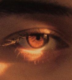 Картинка с тегом «aesthetic, brown, and eyes»