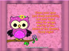 cute owl, owl graphics, good night comments, close your eyes, sweet dreams, good night pictures, glitter graphics