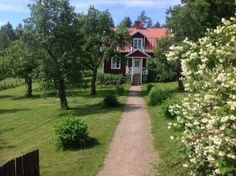 """Ferienhaus inmitten von Wald und Wiesen in Småland  """"Applekullen"""" ist der Name einer kleinen Perle mit einem grossen Grundstück, Obstbäume, einem alten Stallgebäude und ein paar kleinen Nebengebäuden. Umgeben ist dieser typische Smålandshof von Wiesen, Weiden und Wald. Sie wohnen hier sehr abgeschieden im südwestlichen Teil der Komune Vimmerby. Kühe und Pferde grasen in der Umgebung und produzierende Landhöfe findet man in einigen Kilometern Abstand von hier. In den Wäldern leben Hasen, ..."""