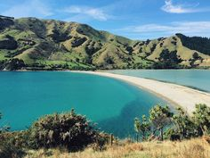 New Zealand road trip: Cable Bay