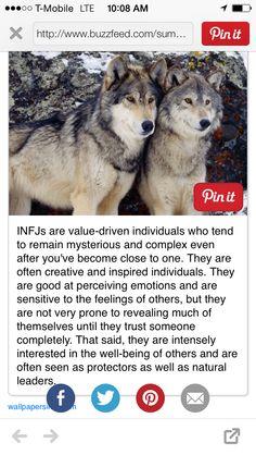 """ The Wolf "" INFJ animal characteristic"