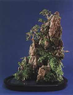 Miniature Landscape - Chinese Penjing Style