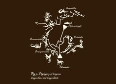 """""""Dragon Phylogeny"""" - Threadless.com - Best t-shirts in the world"""