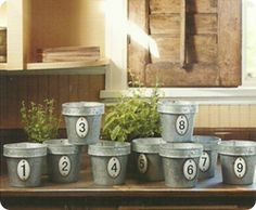 Numbered Terra Cotta Planters