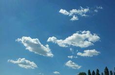 Nuvole al pascolo