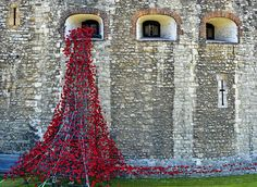 A dazzling display of poppies takes shape at the Tower of London representing the Fallen of WWI,July By November 2014 ceramic poppies, one for each UK Colonial First World War forces' death, will fill the Tower of London Moat. Ww1 Display, Ceramic Poppies, Ww1 Art, Armistice Day, Remembrance Sunday, Anzac Day, Tower Of London, Collaborative Art, Wwi