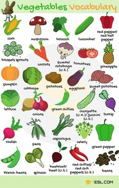 Vegetables Vocabulary Vegetables in English! List of vegetables with images and examples. Learn these vegetables names to increase your vocabulary words about fruits and vegetab Learning English For Kids, Teaching English Grammar, English Lessons For Kids, Kids English, English Vocabulary Words, English Language Learning, English Study, English Class, English Writing Skills