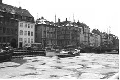 Se billederne: Sne og kulde i det gamle København - Byliv | www.aok.dk