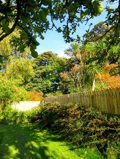 Síle's Garden, Dublin  (Photo by Zuzanne)