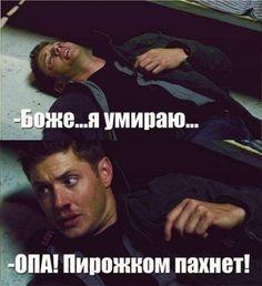 Dean Winchester as usual lol. I am dying of laughter. Supernatural Fans, Supernatural Merchandise, Jensen Ackles, Winchester Boys, Winchester Brothers, Impala 67, Fandoms, Jared Padalecki, Misha Collins
