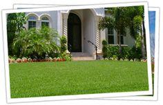 JaMur® Zoysia...the drought tolerant lawn
