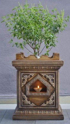 Plants add a charm to indoors. So this Diwali bring home these plants which attracts luck, wealth and prosperity as well as make your home look beautiful. Temple Design For Home, Indian Home Design, Indian Home Decor, Pooja Room Door Design, Home Room Design, House Plants Decor, Plant Decor, Thulasi Plant, Indian Room