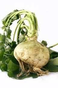 I cant say that I\ve ever eaten a RUTABAGA, but I'm going to now. A member of the cruciferous family, this veggie is rich in vitamin C, dietary fiber, potassium, and antioxidant compounds. Specifically, they contain a high concentration of carotenoids like lutein and zeaxanthin, both of which aid to prevent DNA damage. Also, Im told that cooking them yields a sweet, quite delicious flavor! Ill add this one to this weeks grocery list.