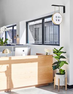 Brisbane is riding the crest of the co-working wave with The Cove, a loft-style workspace that draws on a fusion of Scandinavian and Japanese design.