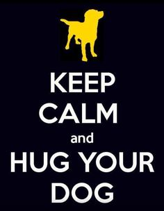 Keep calm and hug your dog. Go crazy and hug ALL the dogs! I Love Dogs, Puppy Love, Cute Dogs, Pet Sitter, Breast Cancer Support, Calm Quotes, Pet Quotes, Lovers Quotes, Dog Rules