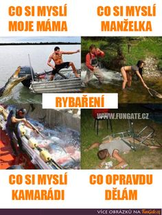 Rybaření Stupid Memes, Funny Animals, Funny Pets, Mojito, Techno, Jokes, Sayings, Movie Posters, Pictures