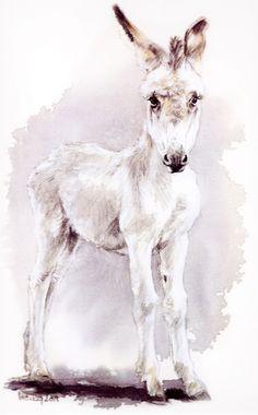 Ânon de Cluny peint par Marie Breucq Donkey Pics, White Donkey, Horse Books, Barnyard Animals, Horses And Dogs, Ceramic Birds, Equine Art, Horse Art, Animal Paintings