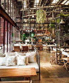 Vivarium Restaurant 2