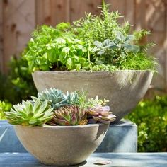 "Our stunning Urban Oasis Planters create a sculptural profile that highlights your favorite ornamental flowers, herbs, succulents or leafy greens. They bring oversized style to your outdoor patio table or indoor coffee table. The finish looks like cement, but the planters are made of resin. Drainage hole. One small planter included. 12"" diam. x 5""H. Plants not included."