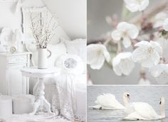 White and Shabby: April 2012