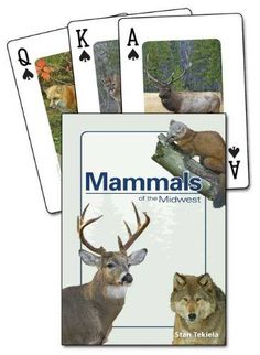 Mammals Of The Midwest Playing Cards. These Mammals Of The Midwest Playing Cards feature beautiful wildlife photos by noted outdoor photographer Stan Tekiela. A different mammal is featured on each card and the deck contains 52 different mammals on 52 standard playing cards with 2 Jokers!