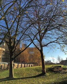 From our friends at Coventry @covuni - What a beautiful crisp Winters day around campus! #coventryuniversity #covuni #winteriscoming #winterdays #campusviews #goviewyou