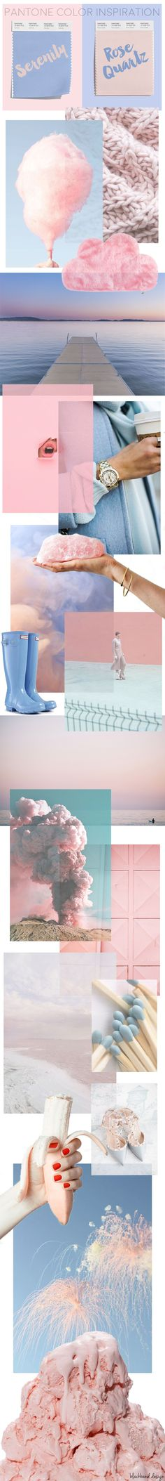 ROSE QUARTZ AND SERENITY One of the biggest trends we hope to see in 2016 is the use of more color! Colour Pallette, Colour Schemes, Color Combinations, Rose Quartz Serenity, Branding Design, Logo Design, Design Color, Pantone Color, Pantone 2016