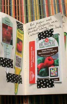colourful garden journal