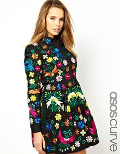 ASOS CURVE Skater Dress with Embroidery