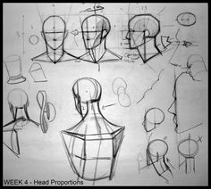 Drawing The Human Figure - Tips For Beginners - Drawing On Demand Figure Drawing Tutorial, Male Figure Drawing, Figure Drawing Reference, Anatomy Reference, Pose Reference, Human Anatomy Drawing, Anatomy Art, Draw Character, Drawing Heads
