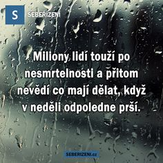 Miliony lidí touží po nesmrtelnosti a přitom nevědí co mají dělat, když v neděli odpoledne prší. Motto, Humor, Motivation, Carpe Diem, Art Education, Quotes, Relax, Inspiration, People
