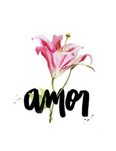 Frases, amor, lettering, flor, floral, love, tipografia - AMOR PARA TODOS OS DIAS